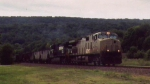 NS 593